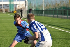 U14 Gaelic Football Dublin Final 2016-11-25 (19)