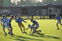 U14 Gaelic Football Dublin Final 2016-11-25 (30)