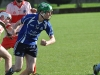 senior-hurling-county-final-22-10-13-65