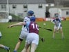 leinster-senior-hurling-final-2013-019