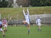 leinster-senior-hurling-final-2013-064