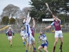 leinster-senior-hurling-final-2013-066