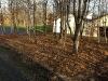 woodland-garden1